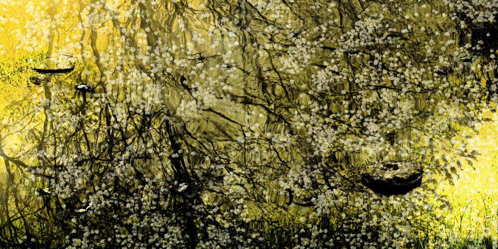 Giverny, 280 cm x 140 cm, Ed. 04/06, 2016